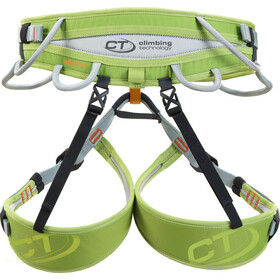 Climbing Technology Ascent Valjaat, grey/green